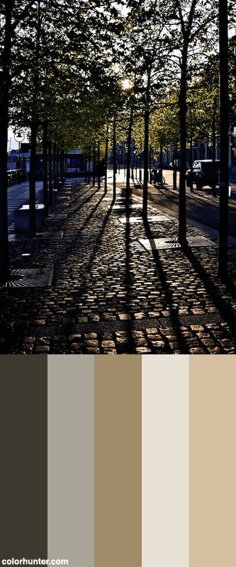 Urban Forest Color Scheme