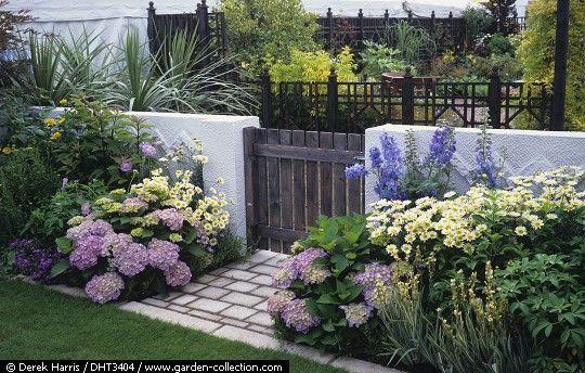 hortensias en clima de buenos aires - Buscar con Google