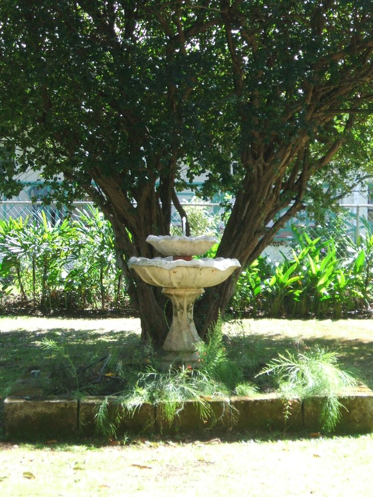 Beautiful fountain in the private, quiet, back yard gardens.
