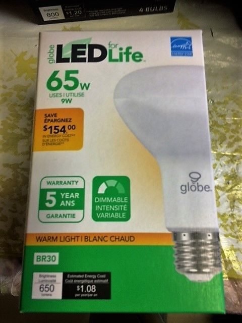 LED 65W - 9 W WARM  LIGHT DIMMABLE LIGHT BULB NEW IN BOX #GLOBEELECTRIC