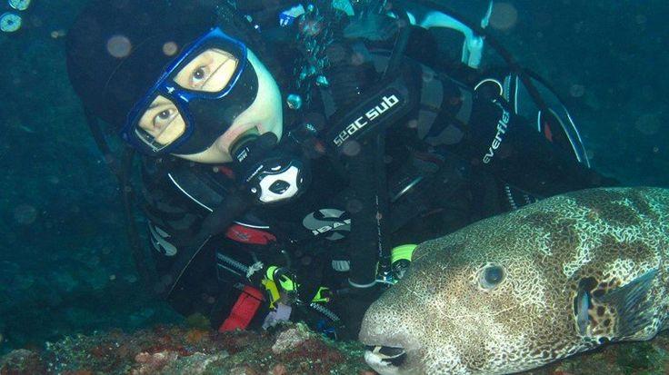Samet Diving Trip