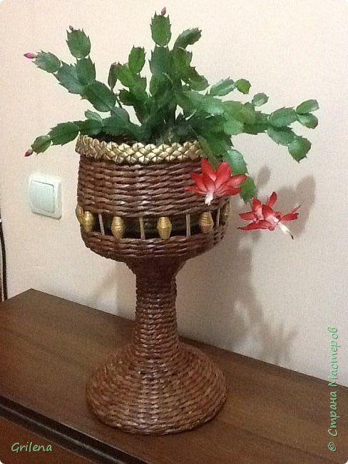 Поделка изделие Плетение Плетеное кашпо -чаша Трубочки бумажные фото 1
