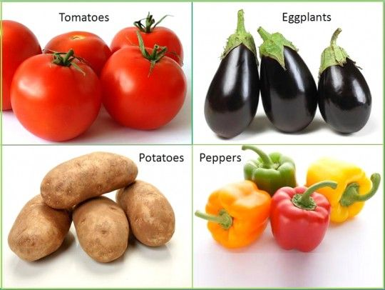 Beware of Nightshades - here's one of the best articles on how nightshade foods (tomatoes, potatoes, bell peppers, and eggplant) might affect health, digestion and auto-immune disorders, especially if you're of anglo-saxon heritage.