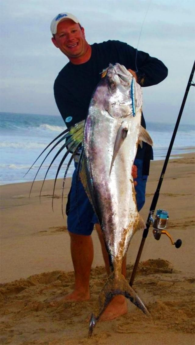 One of the easiest and most accessible ways to enjoy the sport of saltwater fishing is to simply stand on the beach and cast into the surf. Here are some useful tips on how to do it successfully.