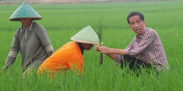 Era Jokowi Indeks Kemakmuran Petani Merosot  NILAI TUKAR PETANI JANUARI SAMPAI APRIL 2016 TURUN Untuk menyegarkan lagi ingatan kita mengenai Nilai Tukar Petani (NTP) berikut penjelasannya ringkas; NTP adalah salah satu ukuran terpenting daya beli dan juga kemakmuran petani NTP merupakan perbandingan pendapatan yang diterima petani dari hasil panen dibanding harga yang harus dibayar petani untuk kebutuhan hidup dan sarana produksi (pupukpestisidasewa traktorpompa dsb). NTP dihitung dengan…