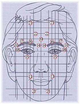 Points réflexes du visage