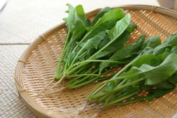 今が旬のほうれん草を使った、寒い冬におすすめの冬ごはんレシピをご紹介します。手軽に作れるものから、スープ、ランチ、夕食のメインメニューまで豊富に10品ご紹介。旬の時期に、栄養価が高くて美味しいほうれん草を食べましょう。