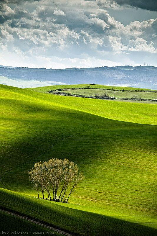 Fields & Shadows - Tuscany, Italy