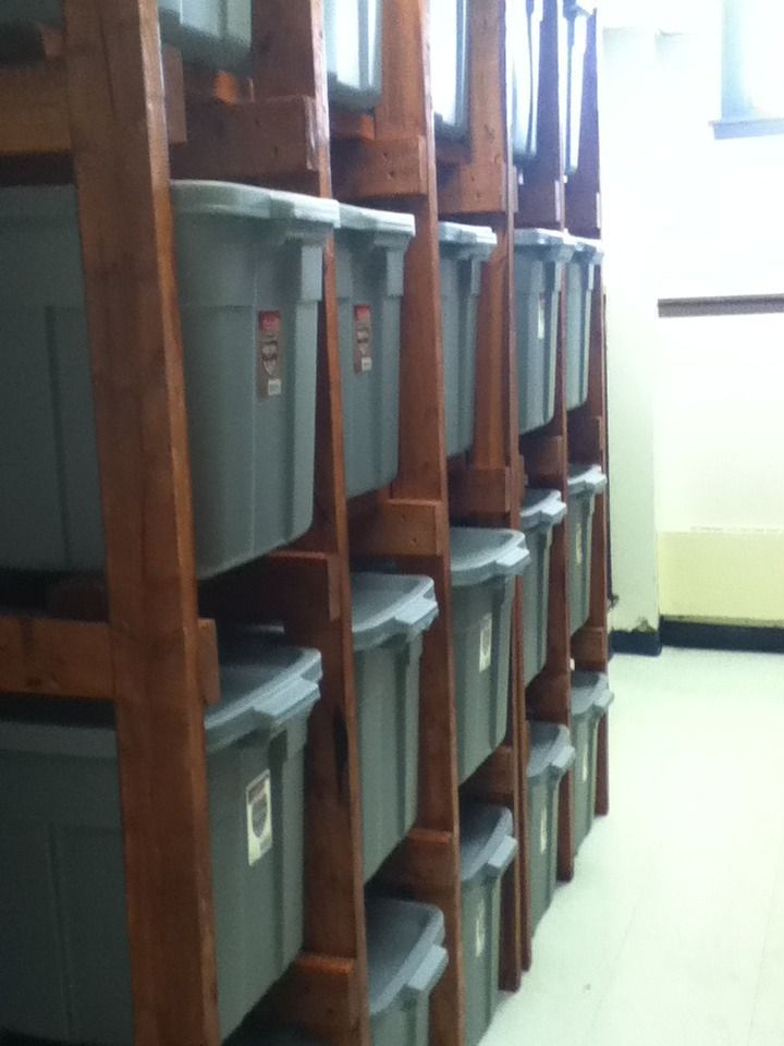Tote Shelves. This is what I want my storage room to look like.