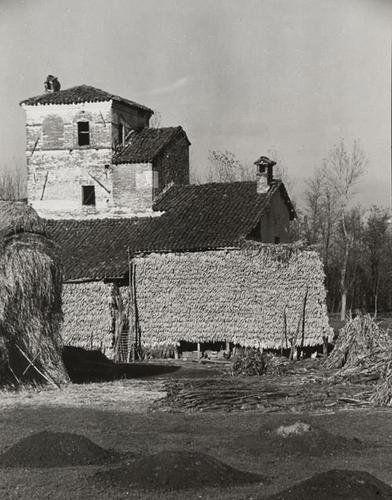 Riccardo Moncalvo (1915) Case ricoperte di grano turco (Cuneo) Anni '40