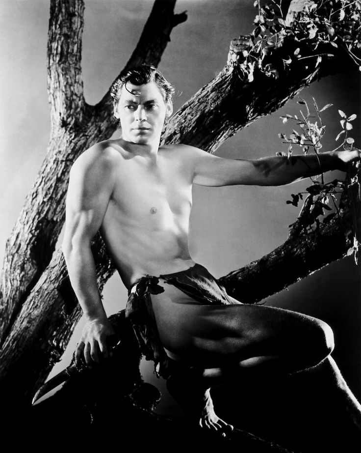Portrait of Johnny Weissmuller - Loved watching these Tarzan movies!