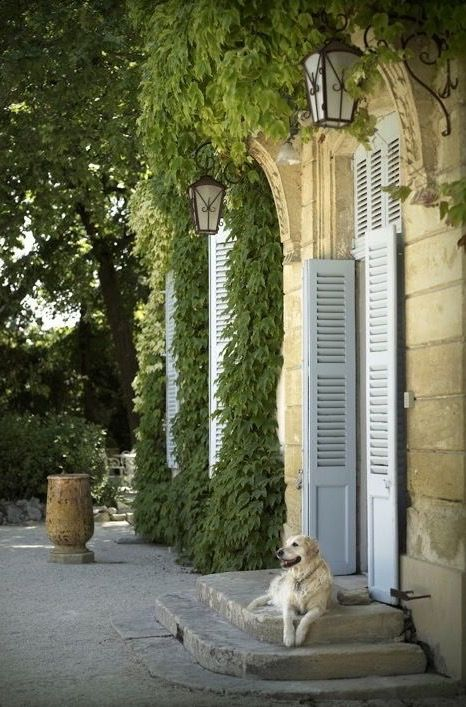 Provence                                                                                                                                                                                 Mehr