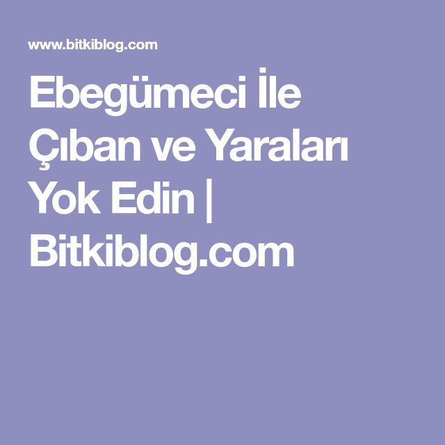 Ebegümeci İle Çıban ve Yaraları Yok Edin   Bitkiblog.com