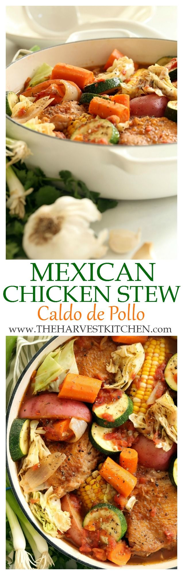 Something really delicious happens when all of these ingredients for this Mexican Chicken Stew simmer in a pot together!  This is a family-friendly chicken stew recipe that's rich and flavorful and comes together in just about an hour.   Dutch oven recipes     one pot chicken recipes   easy chicken stew recipes     healthy recipes  