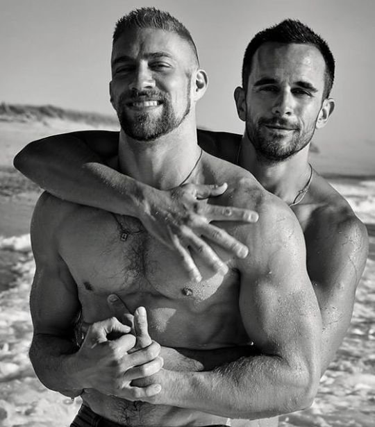 Gay show tv