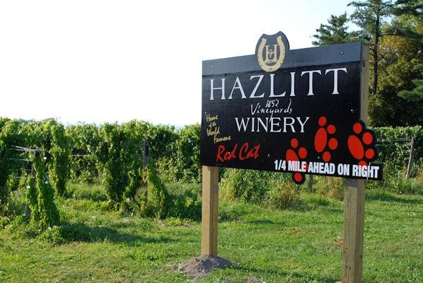Hazlitt Winery - home of my favorite NY red.  Red Cat.