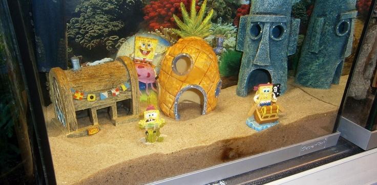 9 best aquarium decoratie images on pinterest aquariums for Decoratie aquarium