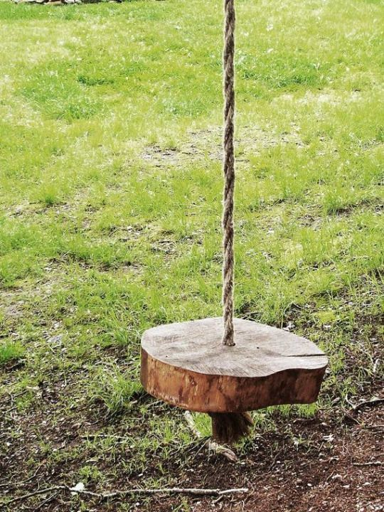 Rustic log slice swing. Quaint and tranquil.
