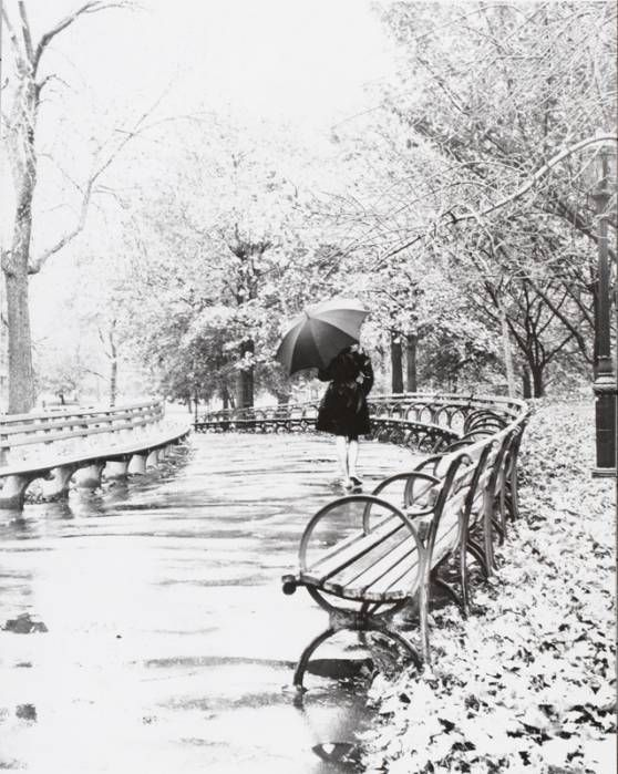1960sCentralpark, New York Cities, Black And White, Walka Rainy, Central Parks, Newyork Cities, Walks A Rainy, Rain Photography, Wingate Pain