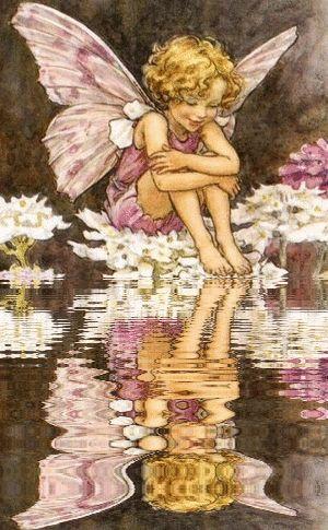 Flower Fairy -