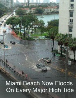 Miami Beach has already spent a hundred million dollars. It is planning on spending several hundred million more. Wanless thinks this is pointless and believes insurers will stop selling policies on the luxury condos that line Biscayne Bay. Banks will stop writing mortgages. This is just the start of a problem that will only get much, much worse. And because people sat home and didn't vote we just elected a president who doesn't believe in climate change.....The New Yorker