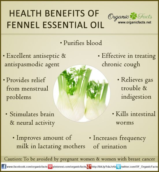 The health benefits of Fennel Essential Oil can be attributed to its properties like anti septic, anti spasmodic, aperitif, carminative, depurative, diuretic, emenagogue, expectorant, galactogog...