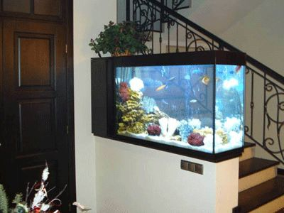 Entry room decorating ideas, tropical fish aquarium, space divider, good Feng Shui aquarium decoration