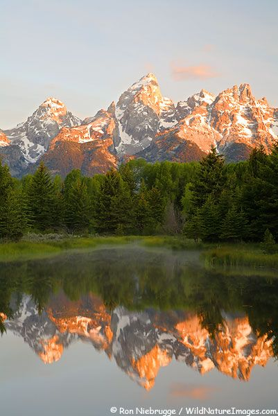 Grand Teton From Schwabacher Landing, Grand Teton National Park, Wyoming ...so beautiful in person... by dolly via wildnatureimages.com