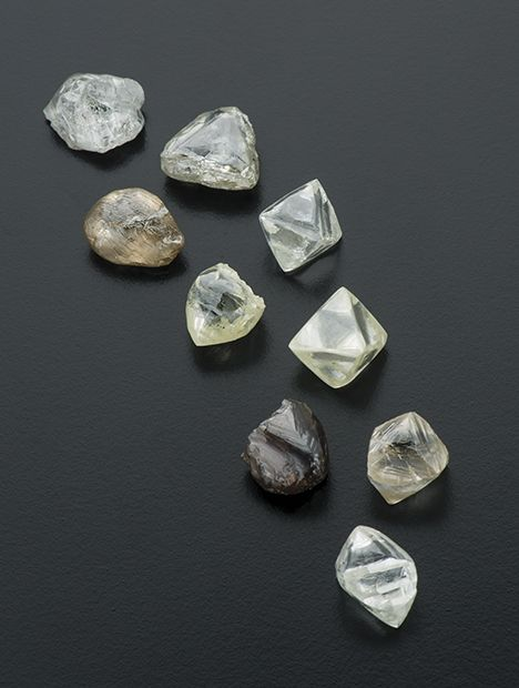 These nine rough diamonds from the Kao mine, 75.37 carats total, were among those auctioned at Fusion Alternatives' November 2014 sale in Antwerp. Photo by Robert Weldon/GIA.