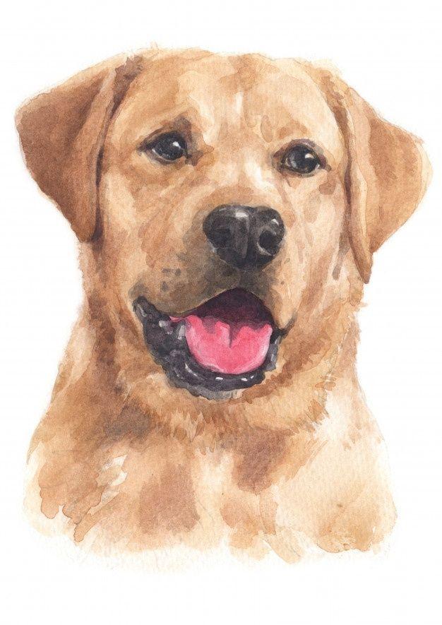 dog gift furbaby yellow lab pet portrait Labrador retriever watercolor painting art print