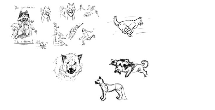 """Here's some additional practice that I took for Lesson 6 """"exaggeration"""" as I feel I didn't have enough knowledge in the hour that I did my actual assignment."""