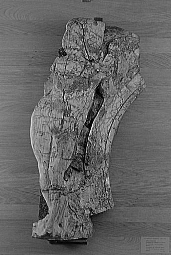 Florentin Daminique (dit) Ricoveri Domenico, dle Barbiere Domenico, Picard Jean, Le Roux (dit)/ Sculpture, enfeu partie d'ensemble, Génie funéraire Le Louvre.- Cet artiste italien, polyvalent, connu comme stucateur, graveur, peintre, architecte et sculpteur, a influencé l'art de la Renaissance à Troyes. Sa réputation fut telle que lui fut attribuée la majeure partie des oeuvres classiques restées anonymes ou non attribuées à d'autres.