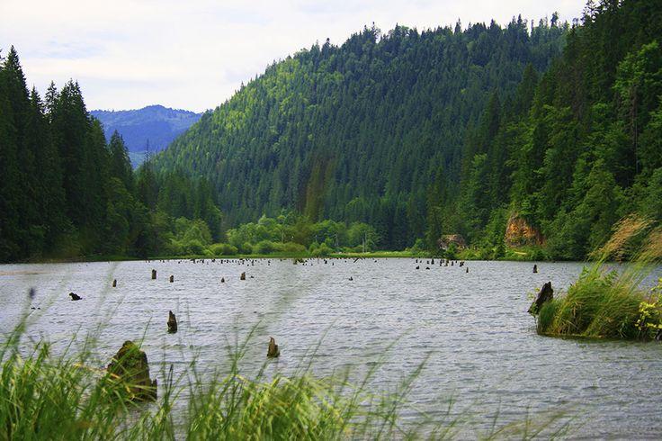 Lacu Rosu, Romania