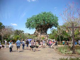 Blog sobre vacaciones a Disney, turismo, fotos y viajes.