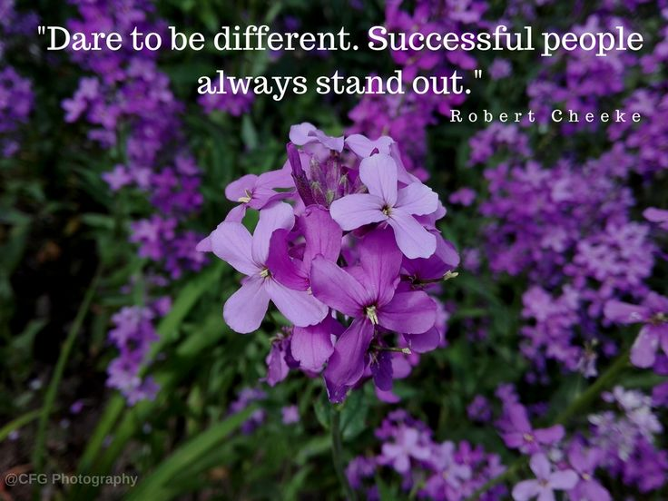 Dare to be different. Successful people always stand out. https://photography.expoanunturi.ro/