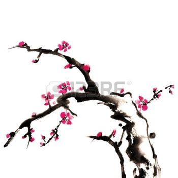 Chinese painting of flowers, plum blossom, on white background Stock Photo