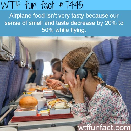 Why Airplane food tastes bad - Facts | Don't know if this is true or not... Have to research this!