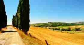 Bike Tour of Tuscany from Florence
