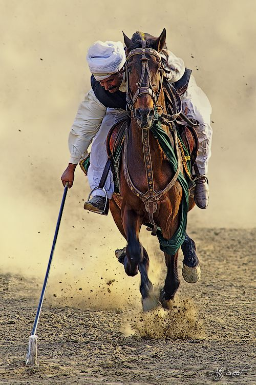 Tent pegging is a cavalry sport of ancient origin, and is one of only ten equestrian disciplines officially recognised by the International Equestrian Federation. Pakistan.