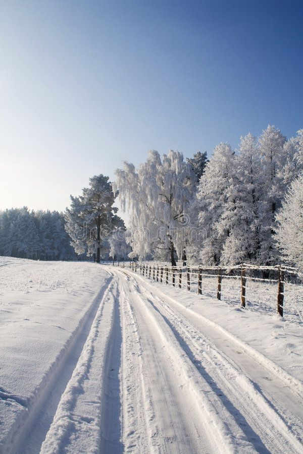 Winter Scene With Snowy Road In Early Morning Lights Affiliate Snowy Scene Winter Road Winter Landscape Photography Winter Scenes Winter Landscape