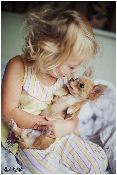 Her morning | Too cute | Pinterest | Pets, Dogs and Puppies