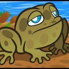 How to Draw a Toad for Kids - Drawing for kids - Drawing tutorials step by step - Animals For Kids