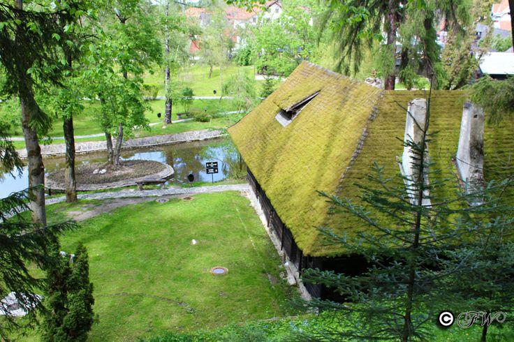 Bran Castle - estate gardens