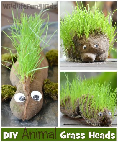 DIY Chia Pet ---for real? this is the coolest idea ever. super cost-effective, too, you could buy the really cheap stockings in the egg containers or have moms donate old ones the week before.---
