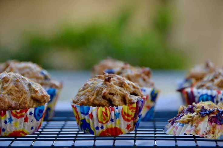 Healthy Blueberry Muffins    Nut   Dairy Free