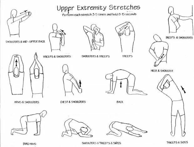 upper extremity stretches