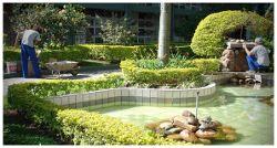 visita il nostro sito ufficiale:   http://www.giardiniereroma.com