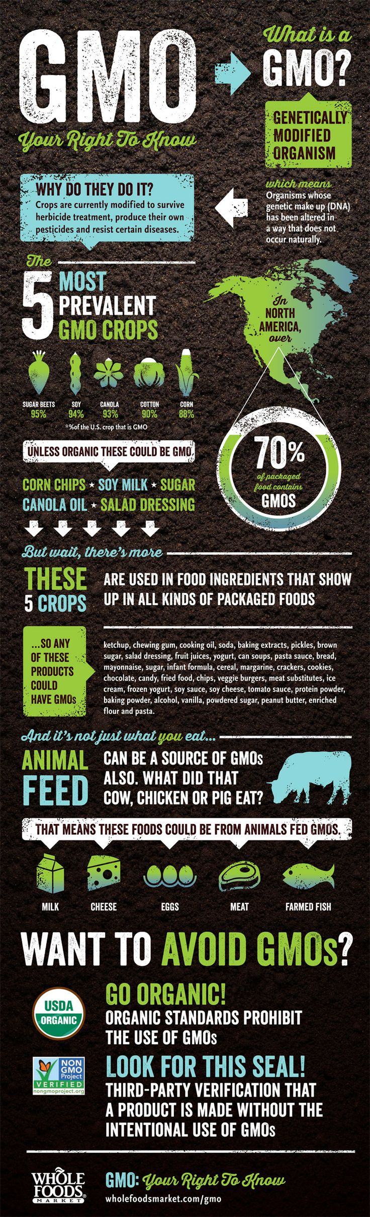 What is a GMO? Whole Foods Market produced the following infographic explaining genetically modified organisms. More about GMOs from Whole Foods Market can be found on their GMO page here: http://www.wholefoodsmarket.com/gmo-your-right-know <3