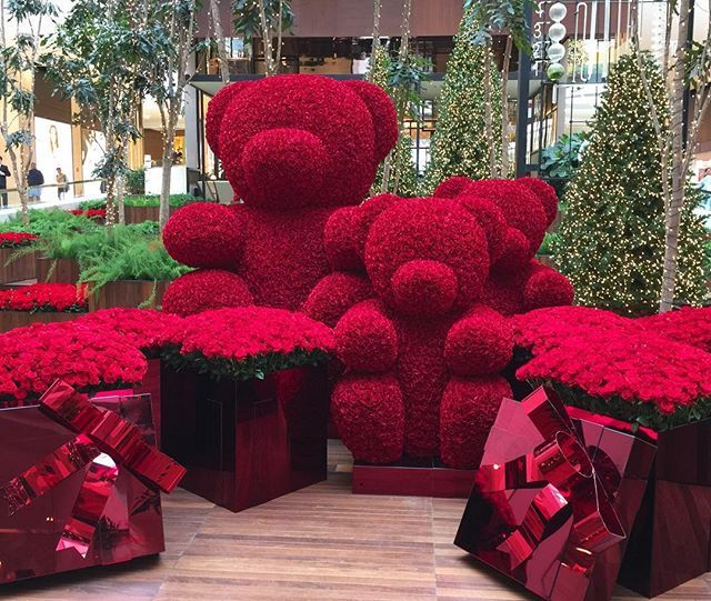 Holiday Rose Bear Jeff Leatham Flowers Pinterest