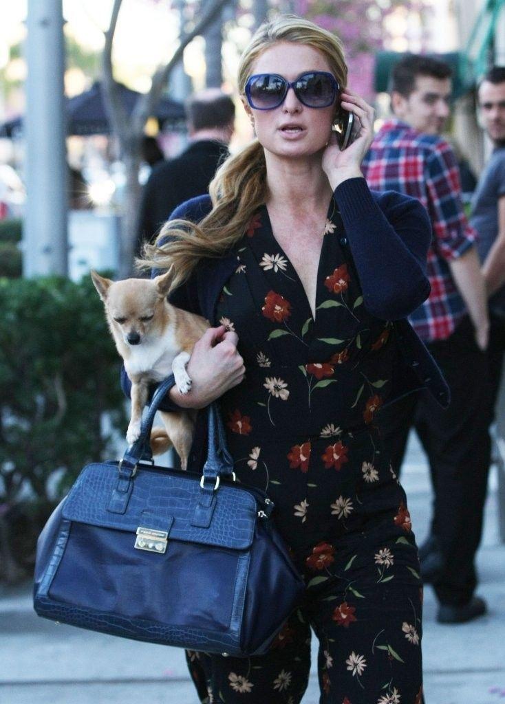 Paris Hilton Photos: Paris Hilton Out And About In Beverly Hills
